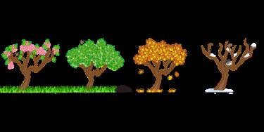 seasons-158601_960_720